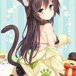 【非・微エロ】猫耳×女の子の組み合わせが最強に可愛い画像まとめ