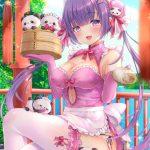 【非・微エロ】えちえち加減が絶妙なチャイナドレス虹画像まとめ その3