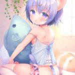 【非・微エロ】ネコミミ美少女に癒される画像まとめ その11